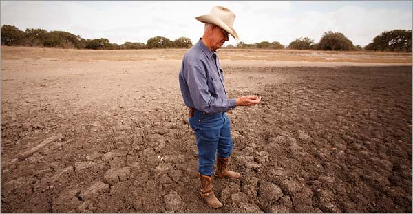 farmer in a dry field