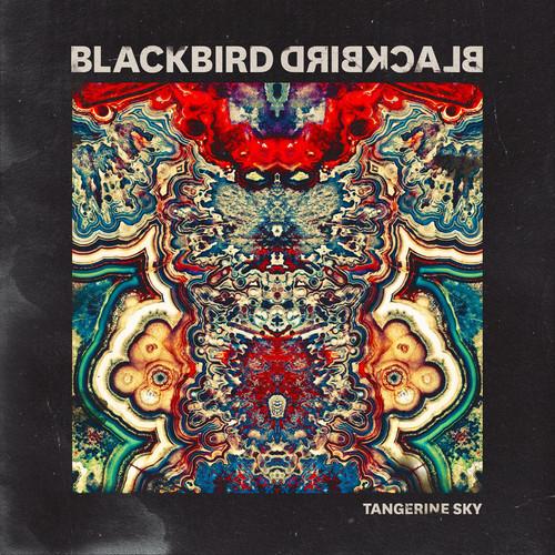#10 Tangerine Sky by Blackbird Blackbird