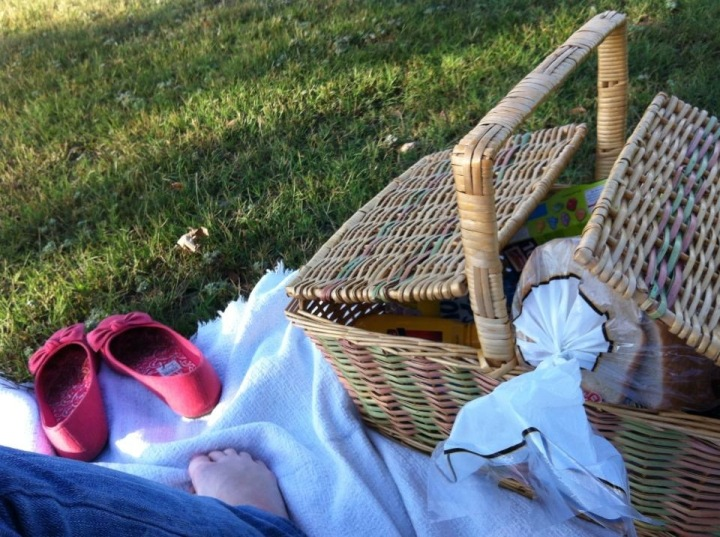 picnic basket date