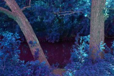 The river in shades of blue and purple.