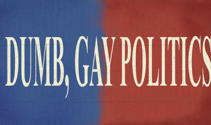 "Back drop, half blue and half red on a concrete texture. ""DUMB, GAY POLITICS"" in peach letters is centered on the image."