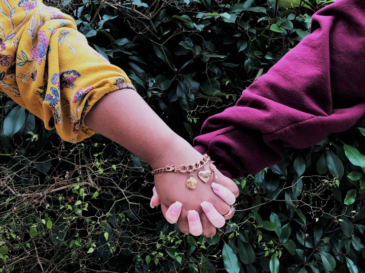 2 girls, one of Caucasian race and one of African American race holding hands in front of green bush.