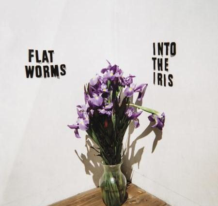 The album cover is a white room with a wood floor and a vase filled with purple flowers is sitting in the corner of the room.