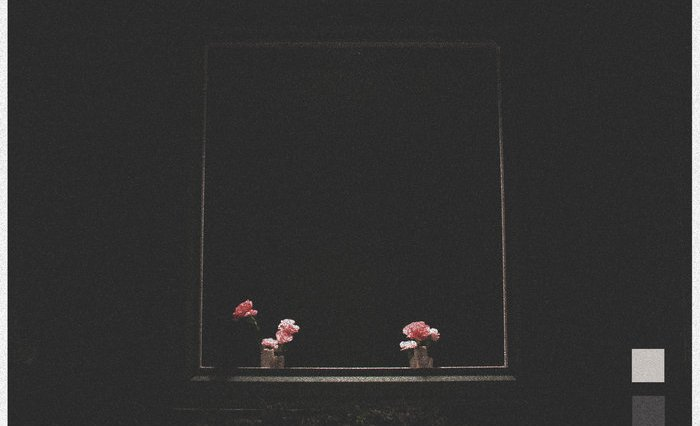 A black background with two small pink flowers in a frame.