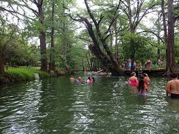 a river surrounded by trees with people in the river and on the bank swimming and hanging out