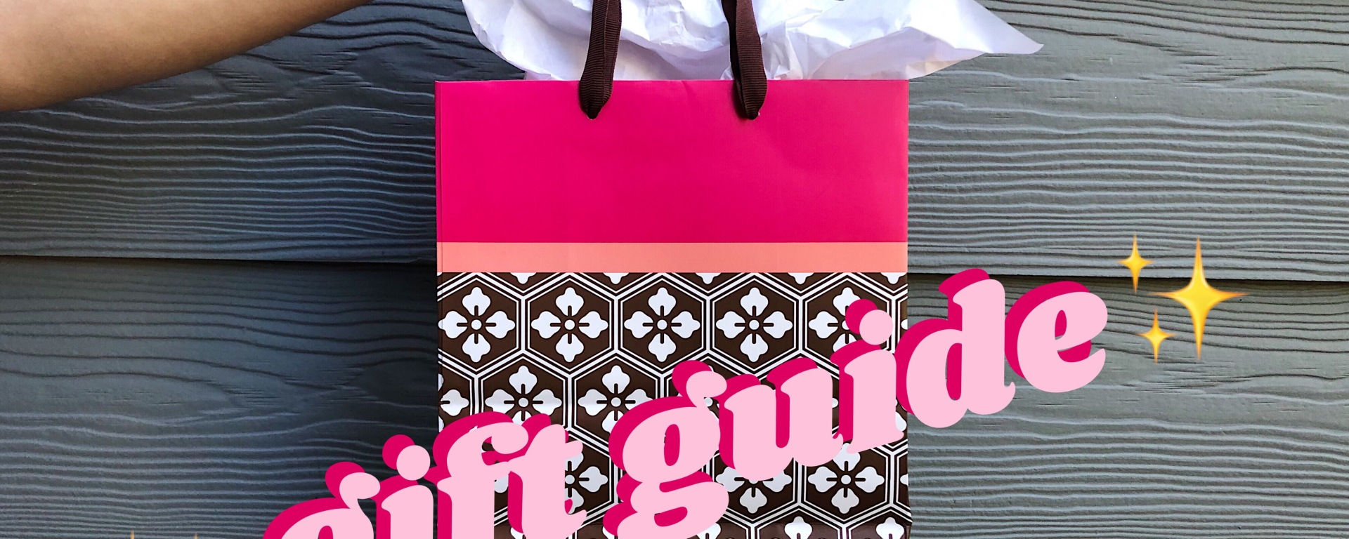 The image features a hand holding a gift bag in front of a grayish/blue wall. The upper part of the gift bag has a pink trim with a thinner peach trim right below.