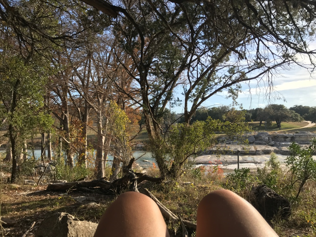 a view of trees and the river from my spot in my hammock