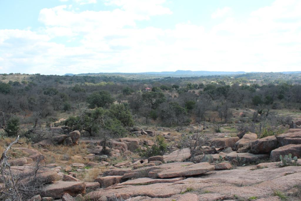 Rocks and trees at Enchanted Rock.