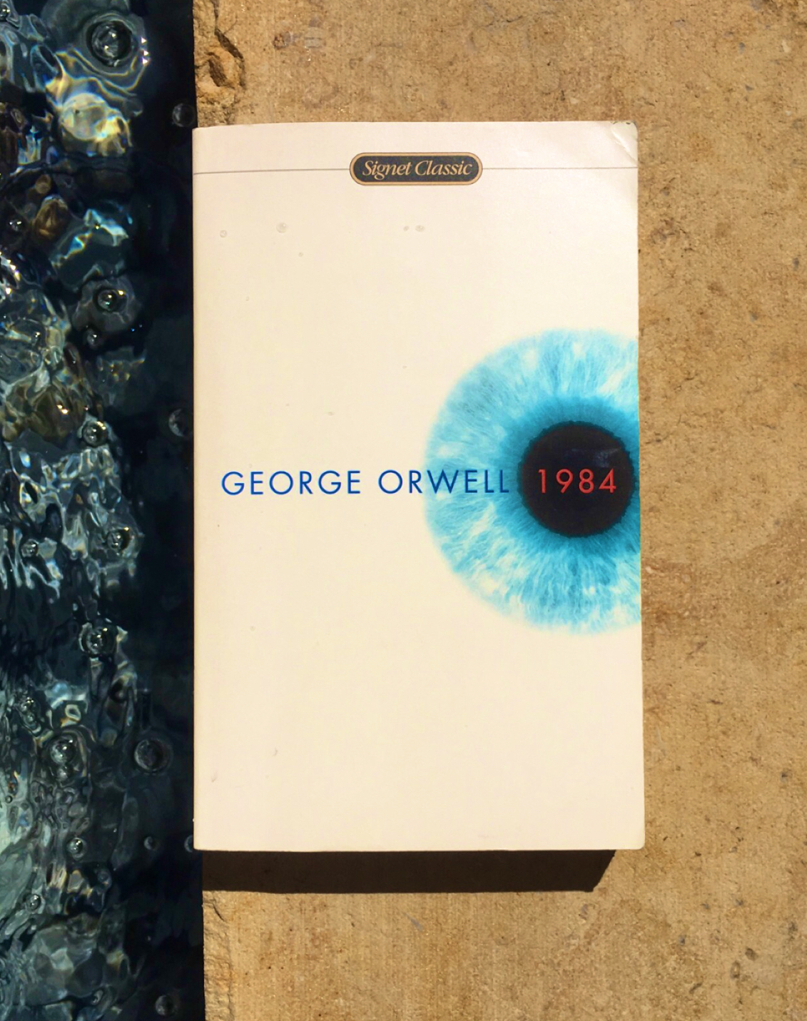 "Image of ""1984"" book cover on the edge of the pool. There is water on one side of the cover and stone on the other."