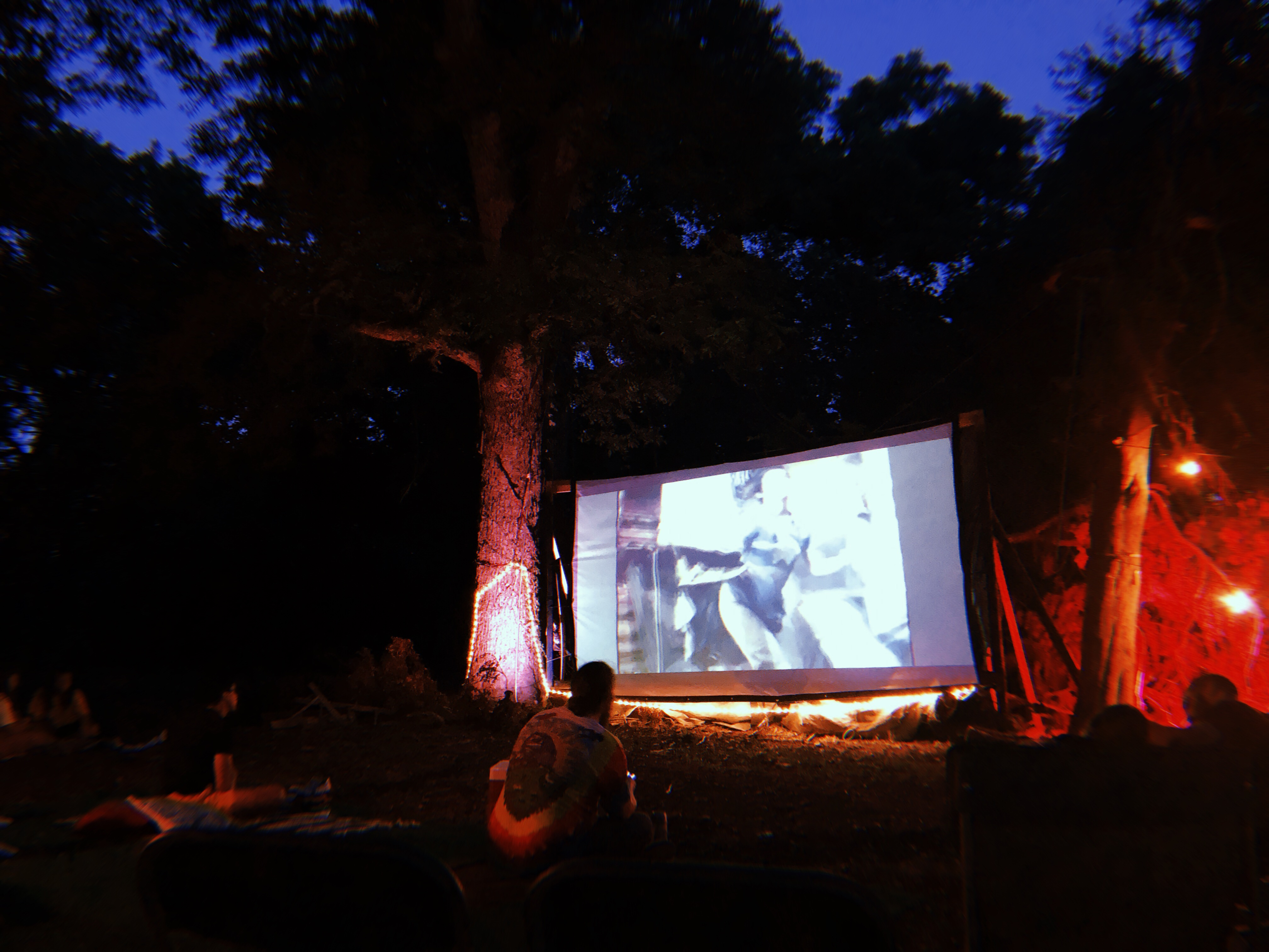 A movie screen in a forest with lanterns.