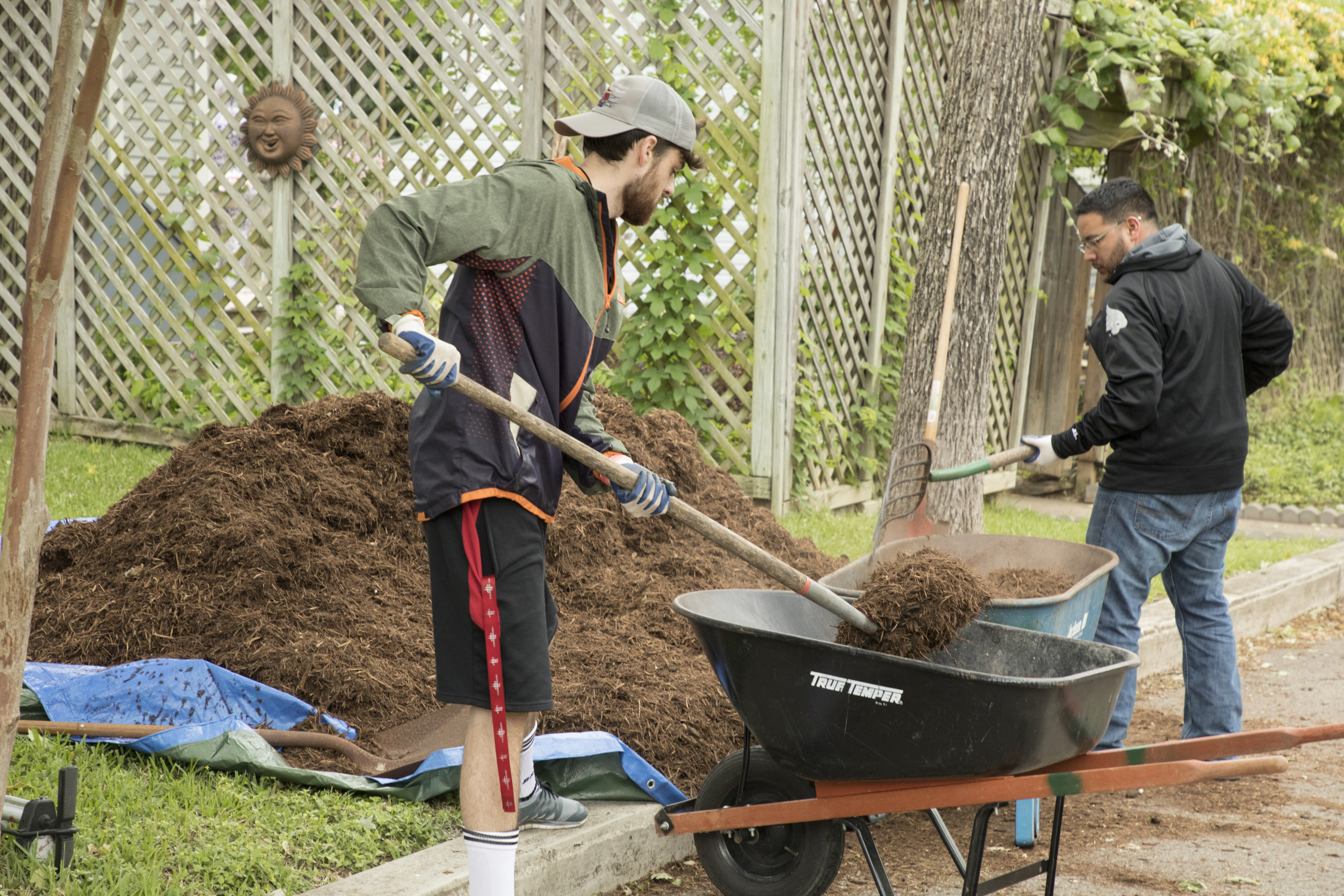 Two young men shovel shirt out of wheelbarrows during the Bobcat Build student volunteer community service.