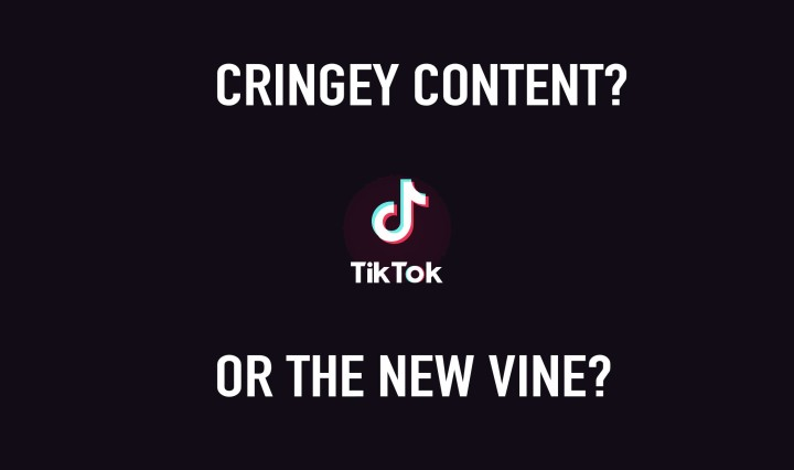 "An edit of the TikTok logo with the words ""Cringey content? Or the new Vine?"""