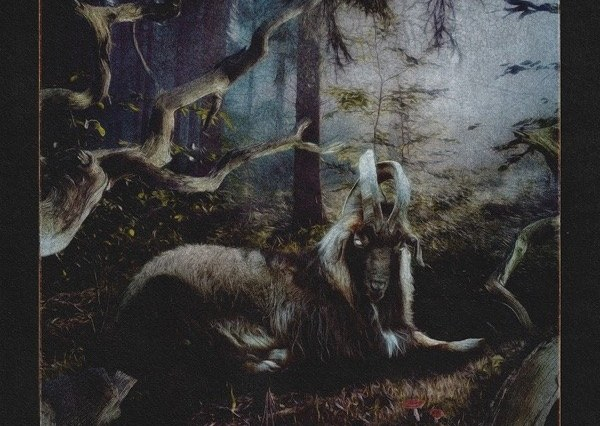 The picture presents a goat sitting in a forest.