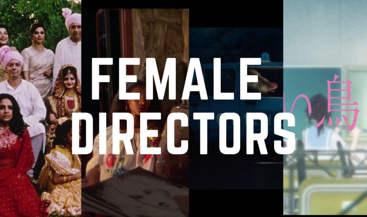 "cropped images of all the films I include in the article with the text ""female directors"" on top"