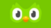 Green Duolingo Bird
