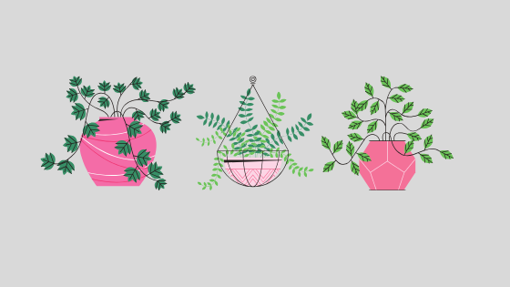 Three icons of plants