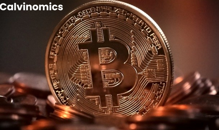 This is an image of a Bitcoin
