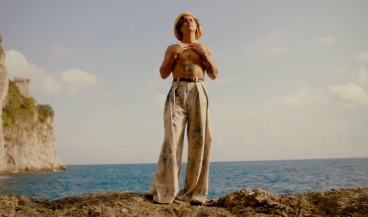 Harry Styles standing on a rock by the ocean