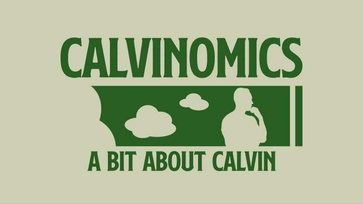 A figure is drawn apparently thinking as two blank clouds are left of the head. The figure and clouds are white with a green background. Above the photo is the word Calvinomics in green and below the photo are the words A bit about Calvin, also in green color