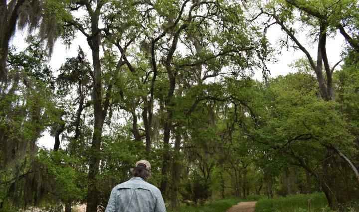 Scott Henize guides a tour under trees through the purgatory creek natural area.